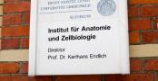 2015-01-31_anatomie_greifswald_001
